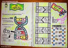 I love science interactive notebooks! There is a lot of cutting and gluing involved but the benefits outweigh the negatives. Interacti...