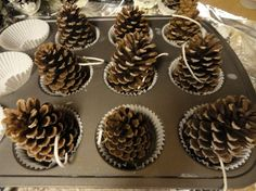 Pine Cone Fire Starters - Camping