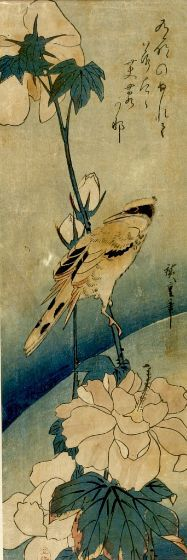 Ando Hiroshige, Bird and a Flowering Peony, Japanese, late Edo period, dated 1830, Harvard Art Museums/Arthur M. Sackler Museum.