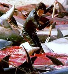 golfinhos mortos por arpões e facas