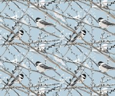 Chickadees and Pussywillows (blue) fabric by twobloom on Spoonflower - custom fabric (good idea for something for my Mom) Cool Fabric, Blue Fabric, Fabric Shop, Catching Fireflies, Book Background, Bird Quilt, Bird Cages, Spoonflower Fabric, Custom Wallpaper