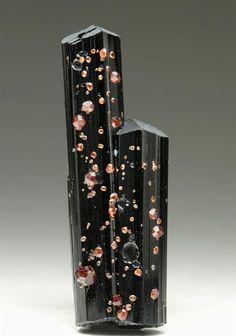 "babinus: "" Spessartine Garnet on Schorl Tourmaline from Pakistan. Crystal Classics Minerals. """