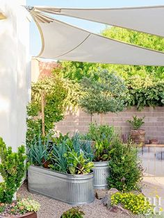 Container gardens are ideal for small spaces like patios and decks. They're easy to create, but it's important to keep these tips in mind to give your container garden a great life.
