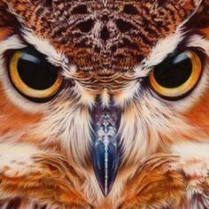 Airbrushed Animals By Eyan Higgins Jones