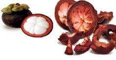Tips kecantikan alami dengan kulit manggis, Manfaat kulit manggis untuk…