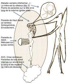 Formation de Curotherapeutes en Harmonisation Energétique des Lieux et Personnes: Les maladies sont créées par des parasites.