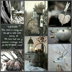 The wind is rising, and the air is wild with leaves. We have had our summer evenings, now for October eves! #moodboard #mosaic #collage #inspirationboard #byJeetje♡