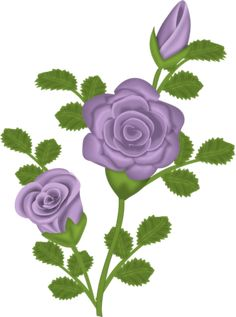 """Photo from album """"My Funny Valentine"""" on Yandex. Beautiful Flowers Wallpapers, Beautiful Roses, Purple Flowers, Red Roses, Clipart Gallery, Decoupage, Rose Clipart, Month Flowers, My Funny Valentine"""