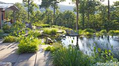 Floral designer Wendy Goidell wanted a natural swimming pool for her solar geothermal house in Wassaic, New York. Chris Rawlings of Water House carved it out of a craggy mountain ledge and worked with Goidell and landscape designer Anna Hadjuk to surround it with native plants.