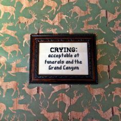 """Parks and Rec inspired cross stitch - """"Crying: acceptable at funerals and the Grand Canyon""""- Etsy- $12.00"""