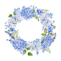 aquarelle couronne d'hortensias bleues Wreath Watercolor, Watercolor Flowers, Flower Frame, Flower Art, Diy Invitation, Realistic Flower Drawing, Wreath Drawing, Blue Hydrangea, Art Clipart