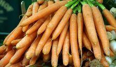 Jak správně pěstovat mrkev Carrots, Vegetables, Garden, Food, Garten, Lawn And Garden, Essen, Carrot, Vegetable Recipes