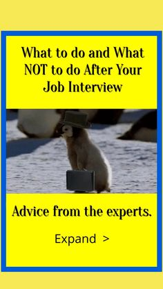 Interview Advice, Job Interviews, Interview Questions, Career Quotes, Work Quotes, Career Advice, The More You Know, Good To Know, Job Celebration