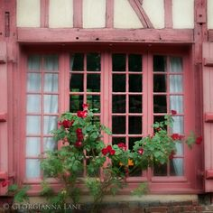 Tudor- potting shed colors