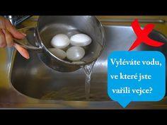 Vyléváte vodu, ve které jste vařili vejce? - už to nedělejte, důvod vás překvapí!  Perfektní - YouTube Kitchen Hacks, Good To Know, Eggs, Neon, Youtube, Breakfast, Aurora, Relax, Diet