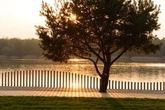 Reurbanização da orla do lago Paprocany,© Tomasz Zakrzewski Brick Fence, Front Yard Fence, Farm Fence, Horse Fence, Rustic Fence, Fence Art, Cedar Fence, Fence Landscaping, Backyard Fences