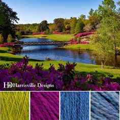 'Garden Bridge' color palette featuring Shetland Yarn in Grass, Majenta, Cobalt, and Cornflower.