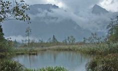 Der wärmste See im Salzkammergut Austria, Mountains, Nature, Travel, Public Bathing, Recovery, Road Trip Destinations, Alps, Places