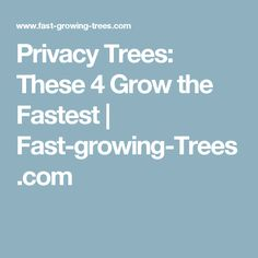 Privacy Trees: These 4 Grow the Fastest | Fast-growing-Trees.com