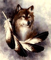 This is a sauce with some great ingredients, like honey, soy sauce and pineapple juice Native American Wolf, American Spirit, American Indian Art, Animal Spirit Guides, Spirit Animal, Beautiful Creatures, Animals Beautiful, Wolf Pictures, Eagle Pictures