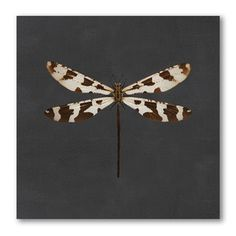 Insect Art by Gerry Wade - Dragonfly