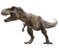 Dinosaur Photo, Dinosaur Art, Jurassic World Dinosaurs, Jurassic Park World, Tiranosauro Rex, Festa Jurassic Park, Photoshopped Animals, Jurrassic Park, Dinosaur Coloring Pages