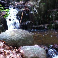 Babbling brook. Patterson nj