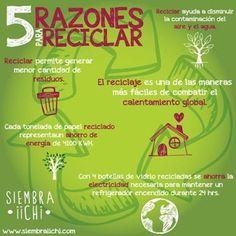 5 Razones para RECICLAR #accionesverdes #ecoretos #umayor