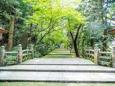 Shirayamahime Shrine/ishikawa