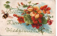 Hedgesville, West Virginia, Greeting Card from Hedgesville, West Virginia. West Virginia, Greeting Card, Card Sentiments, Congratulations Card