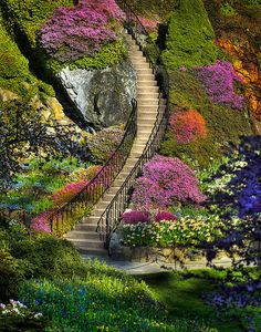 Stairway to Heaven. Butchart Gardens in Brentwood Bay (near Victoria) on Vancouver Island in British Columbia, Canada Stairway To Heaven, Beautiful World, Beautiful Places, Beautiful Pictures, Beautiful Stairs, Beautiful Flowers, Beautiful Scenery, Amazing Photos, Prettiest Flowers