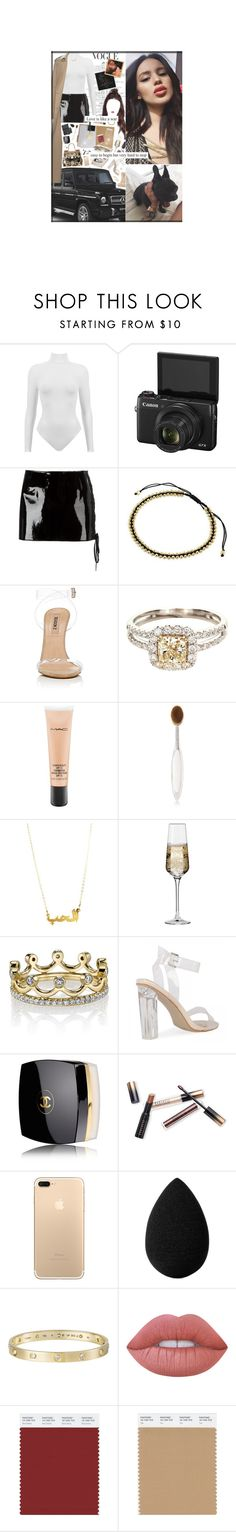 """""""Jan. 22nd, 2017"""" by ayita-nicole ❤ liked on Polyvore featuring Anthony Vaccarello, NOVICA, Mercedes-Benz, MAC Cosmetics, Artis, Dolce&Gabbana, Krosno, Erica Courtney, Chanel and Borghese"""
