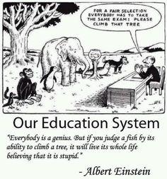 Everybody is a genius - Albert Einstein quote