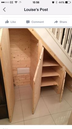 Understair Storage Idea