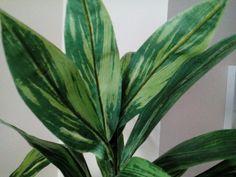 Iloa viherkasveista ja niiden hoitamisesta