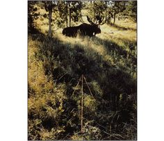 John Pfahl - Altered Landscapes