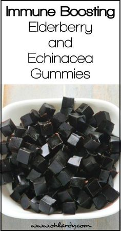 Immune Support Elderberry and Echinacea Gummies - Oh Lardy! Want all the Oh Lardy awesomeness delivered right to your inbox?  Grab our newsletter here: https://il313.infusionsoft.com/app/form/d0d7082c8e0308d3bca548dedc511cae