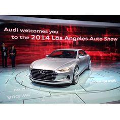 Audi never ceases to #amaze us! #LAAutoShow #SantaMonicaAudi #Audi   #SMAudi #quattro #fourrings #socalaudidealers #audidealers #truthinengineering #audigramm #audizine #audisport #audiofficial #audiusa #newaudi #4rings #quattroeveryday   http://bit.ly/1v40lSM
