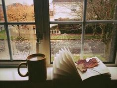 "booksdirect: ""Autumn reading (by the window). """