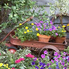 This old wagon adorns the backyard....makes gardens inviting, filled with whimsy and historical stuff.  Little surprises....an unusual container, a hand-painted birdhouse, a mosaic stepping-stone -- go a long way toward giving your yard personal style and flair.