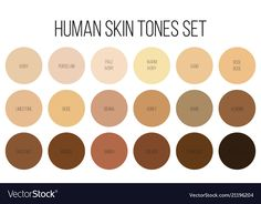 Illustration of Creative vector illustration of human skin tone color palette set isolated on transparent background. Abstract concept person face, body complexion graphic element for cosmetics vector art, clipart and stock vectors. Skin Color Palette, Nature Color Palette, Makeup Palette, Color Palettes, Colors For Skin Tone, Lip Colors, Colours, Soft Autumn Color Palette, Skin Shades