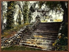 One of the staircases at Radium Springs in Albany, GA. Now a botanical garden.