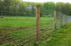 4ft Tall Woven wire (non climb) fence with an added, electified, high tensile wire at top of fence