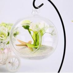 Cnmodle DIY Clear Round Ball With One Hole Hydroponic Plant Flower Hanging Glass Vase Container Home Garden Decoration, Red