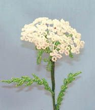 Beaded flower patterns. Queen Anne's lace!