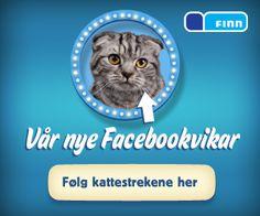 FINN.no sin stemme på Facebook februar 2012