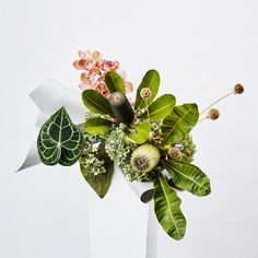 Our signature, ultra-vibrant selection of native botanicals, paired with complimentary flowers and foliage. Art Floral, Floral Artwork, Floral Design, My Flower, Flower Art, Vertical Garden Plants, Modern Flower Arrangements, Flower Tutorial, Floral Bouquets
