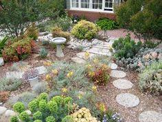 My Great Outdoors:  My Mom's Drought Tolerant Garden