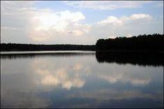 Craighead Forest Park in Jonesboro, AR