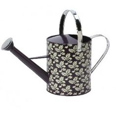 .Decorative Watering Can.